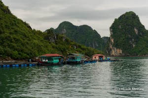 A Fishing Village on Ha Long Bay