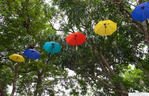 Decorative parasols on display at Java coffee house