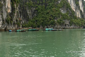 Fishing Village on Ha Long Bay