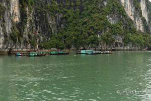 Fishing Village on Ha Long Bay