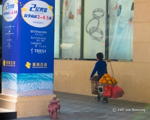 Woman Carrying Goods to Market in Xiamen