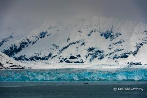 Hubbard Bay Glacier