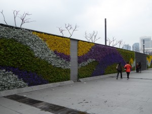 a floral wall along part of the Bund (the Shanghai embankment on the Huangpu River)