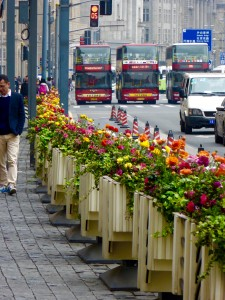 flowers on a busy Shanghai street