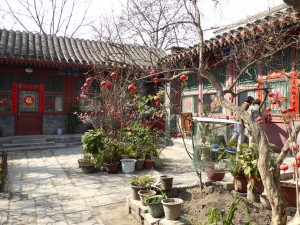 Hutong courtyard with plants and caged birds in center