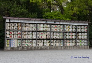 Saki Wall at the Tsurugaoka Hachimangu Shrine
