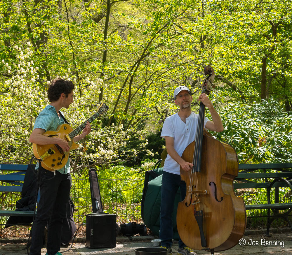 Musicians in Central Park